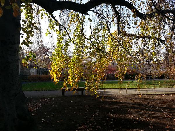 Untermyer Gardens, Yonkers