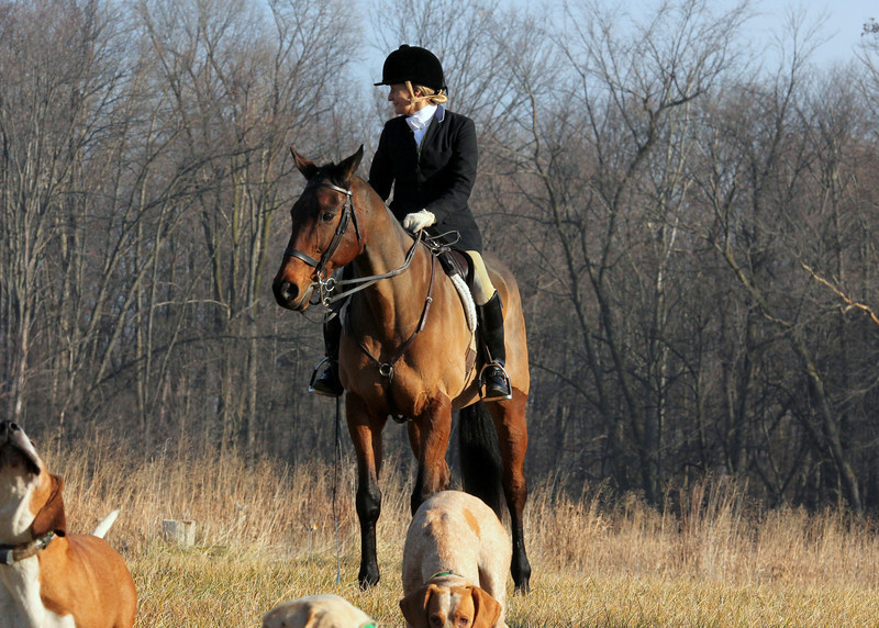 Metamora Fox Hunt-043