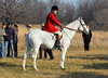 Metamora Fox Hunt-033