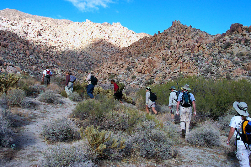The group starts off on the hike.
