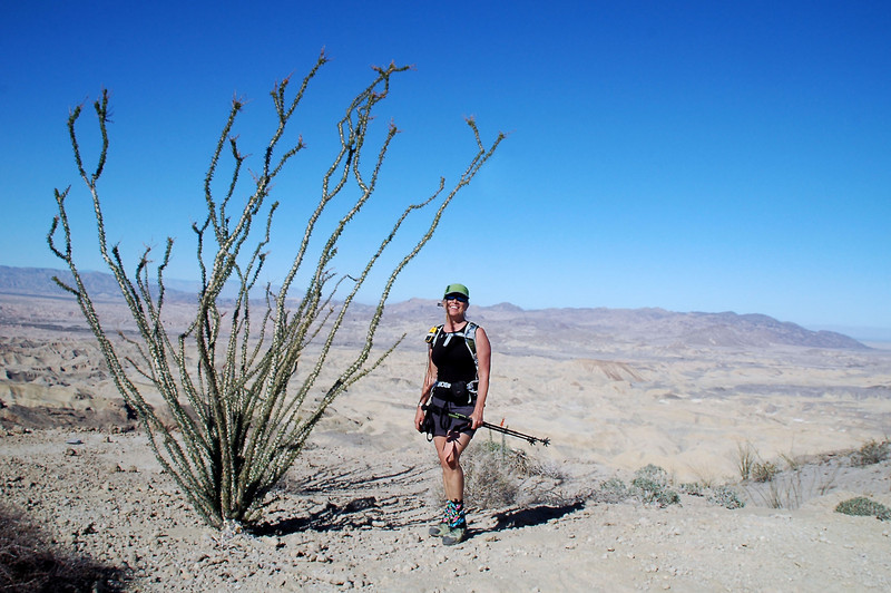 Sooz and an ocotillo with the Carrizo Badlands in the background.