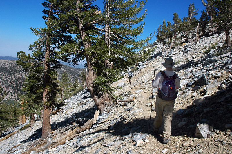 I was surprised to find Scott and Darrell on the trail. The others hiked to San Gorgonio Mountain where they will climb down a chute on the north side to connect with the Sky High Trail at the 10,200 foot level.