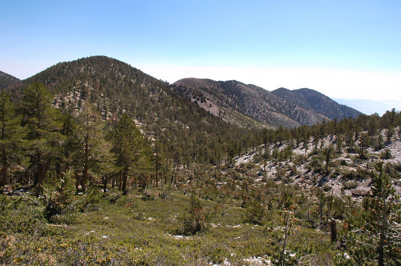 A view of the Ten Thousand Foot Ridge.