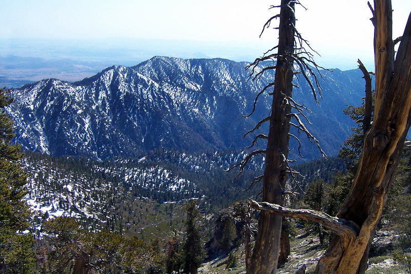 Looking down into Mill Creek Canyon from the south slope of Dobbs Peak.