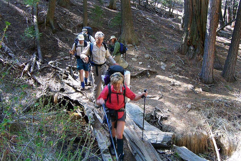Sooz leads the way across a log bridge over Vivian Creek.