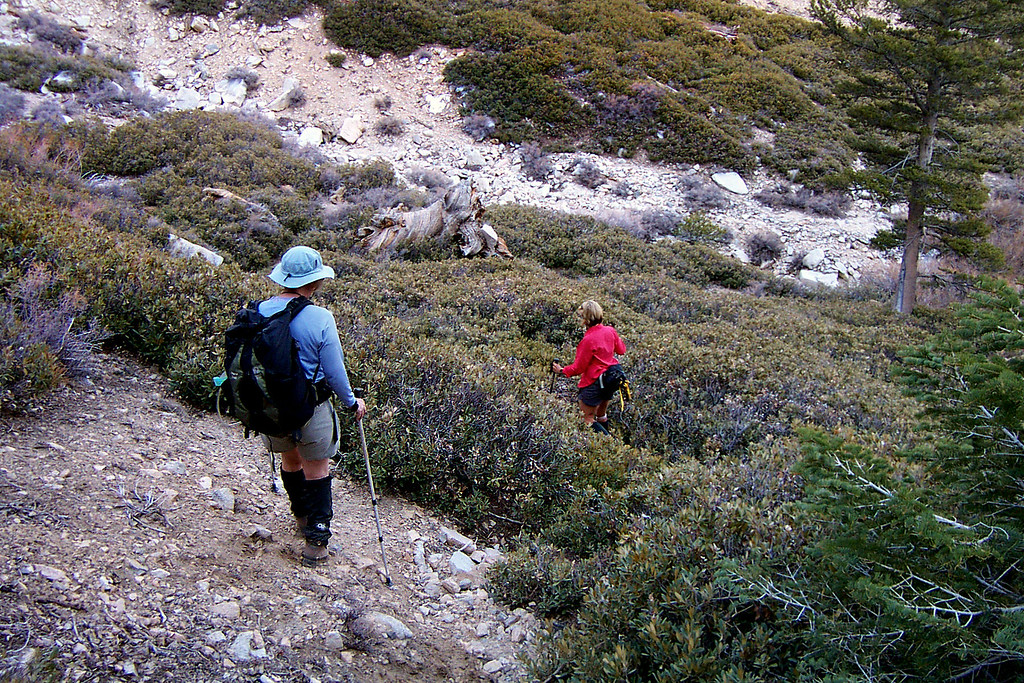 We took a different and much easier route back to camp. Here we are about to reach the canyon just above our camp.