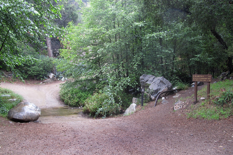 The trail head is just past the campground. Not much water flowing in the stream, but was happy that it wasn't dry.