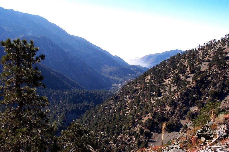 A view down San Antonio Canyon from the trail.