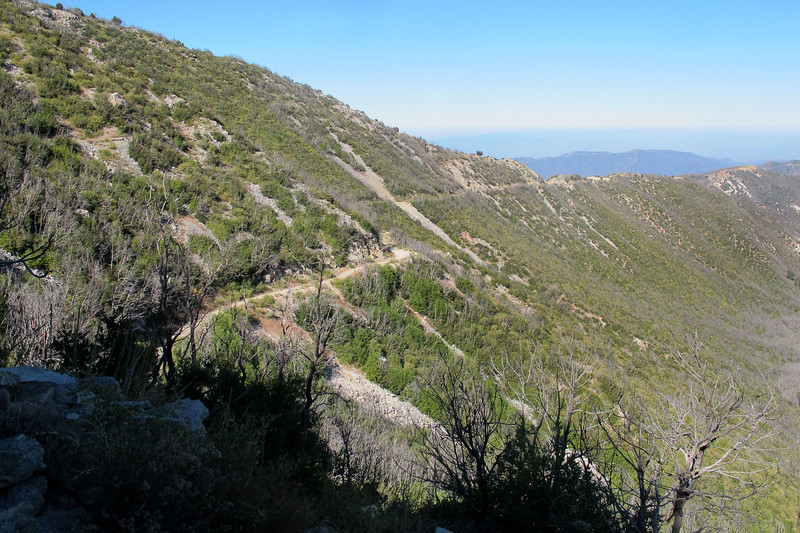 Looking down on the fire road which parallels the trail along Mount Lowe's west slope.