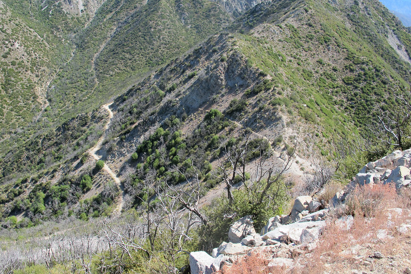 Below you can see the trail I'm hiking on and below it the Mount Lowe fire road.