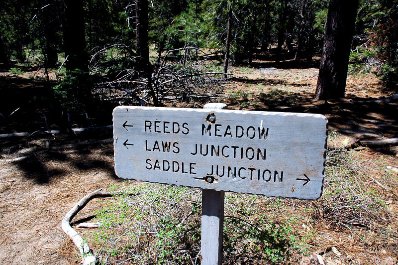From Tahquitz Meadow we headed down to Laws Junction, a 1,000 foot lost.