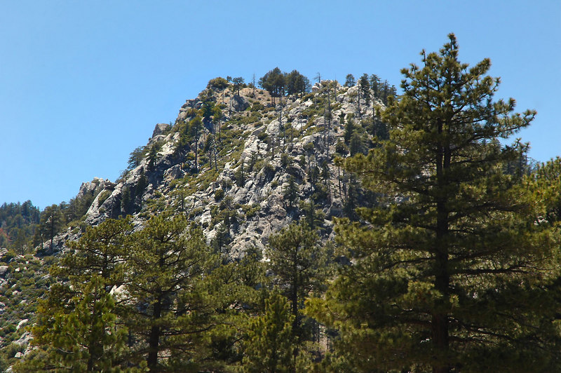 The GPS shows Sam Fink Peak behind this one. Some how we got on the wrong side.
