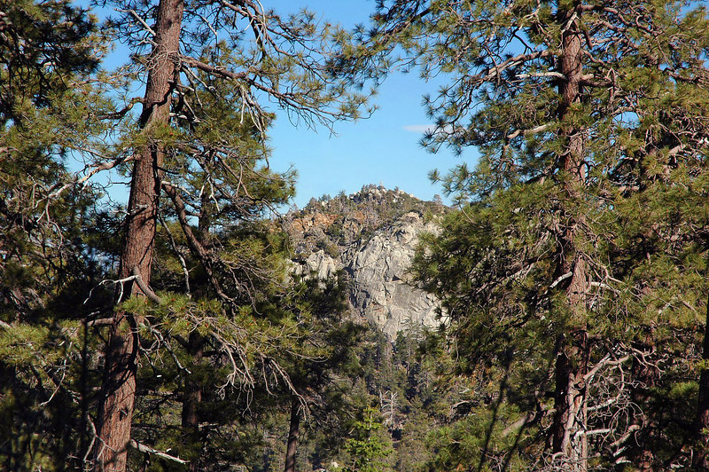 This was the only view of Sam Fink Peak we got due to the trees and other peaks.