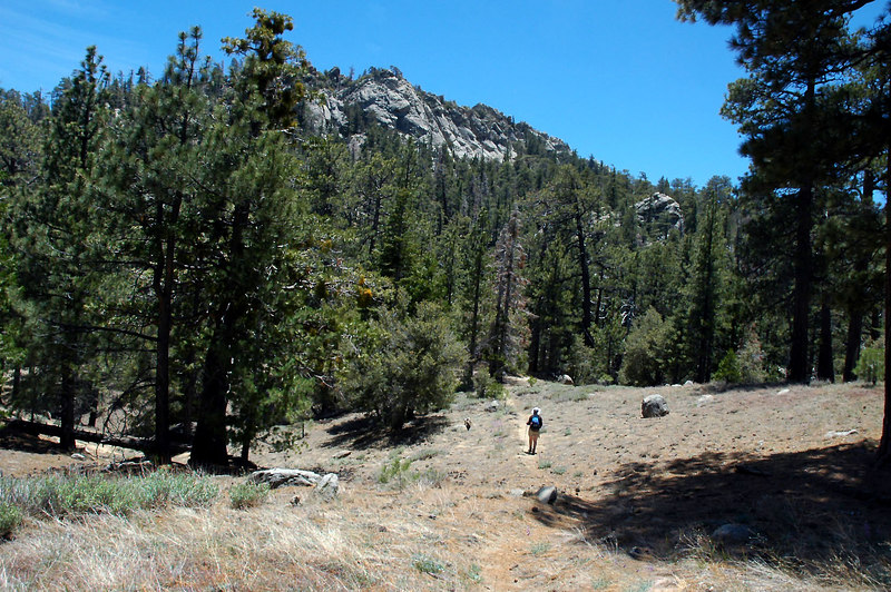 Almost to Caramba Camp and the end of the trail, we will have to find our own route to the peak.