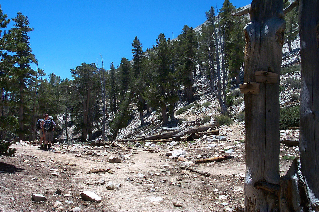 This is at Mine Shaft Saddle at just under 10,000 feet. The end of the Fish Creek Trail and the start of the Sky High Trail.