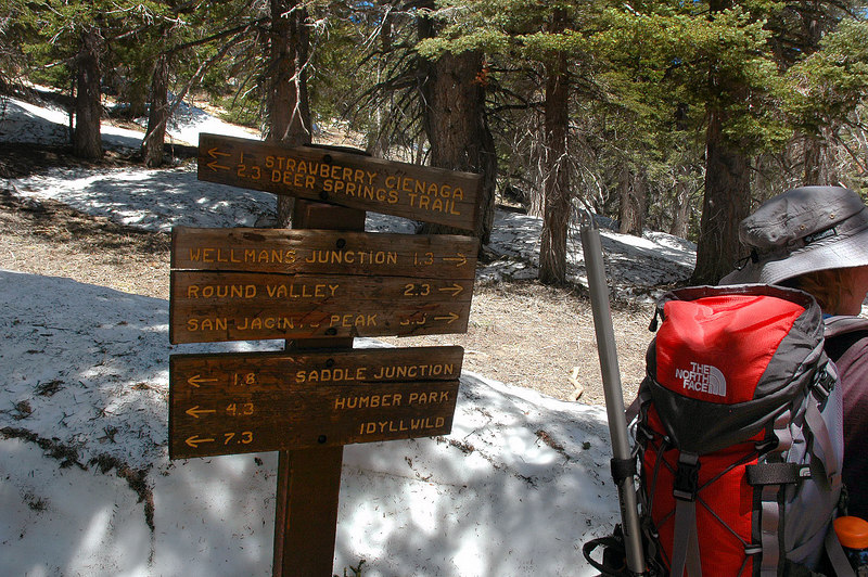 At the trail junction that leads to Strawberry Cienaga at 9,000 feet. We will stay on the trail to San Jacinto Peak.