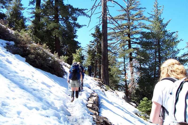 It didn't take long before we reached snow level. We will be hiking in snow almost till the end of the hike.