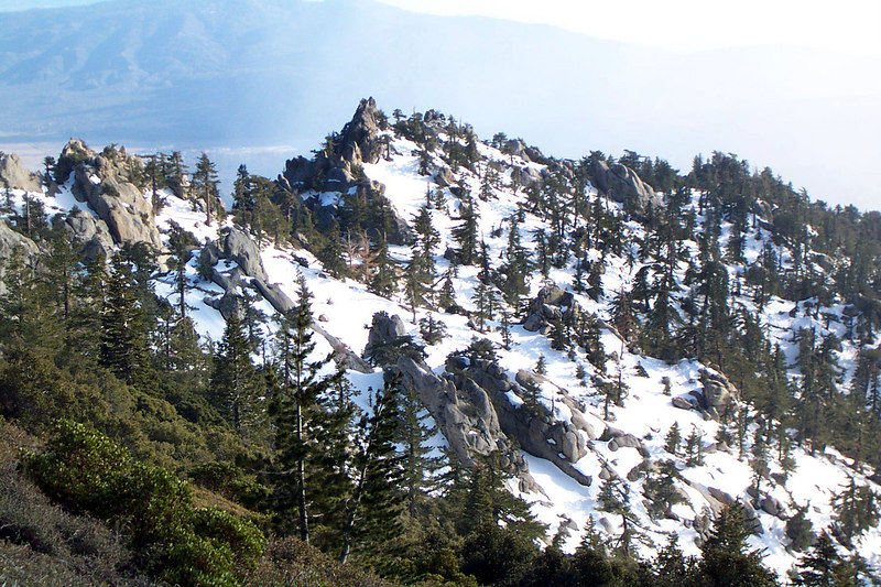 The same slope from lower down the trail.