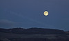 Moon Over Dumbarton - 29 October 2012