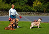 Lady with Five Dogs - Goathland
