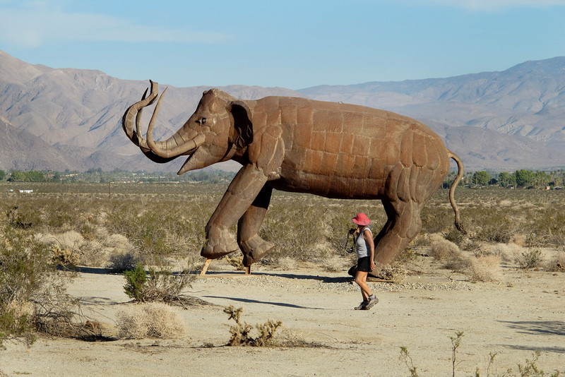 One of the big Mammoths.