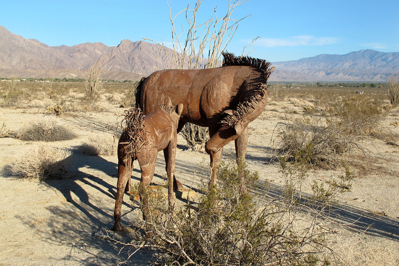 Momma horse with colt.