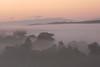 22/02/2017 - Misty Morning Sunrise at Tarago