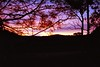 1997 Jul - Sunset Along The Armidale Road Between Dorrigo and Grafton