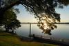 14/08/2017 - Clarence River Public Jetty, Ulmurra