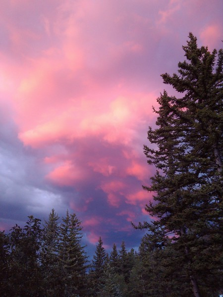 Taken in Cuchara, Colorado one evening....