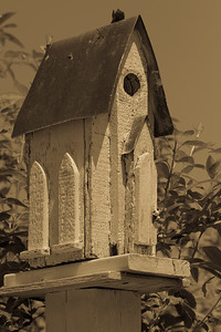 antique birdhouse-1