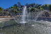 Golden Gate Park Fountain