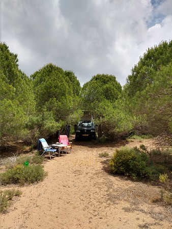 Elaia beach campsite