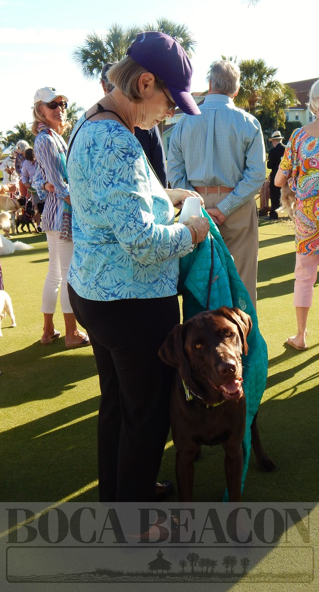 Blessing of the Animals, 2015