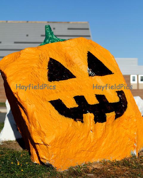 Hayfield-8730