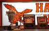 Hayfield-5739