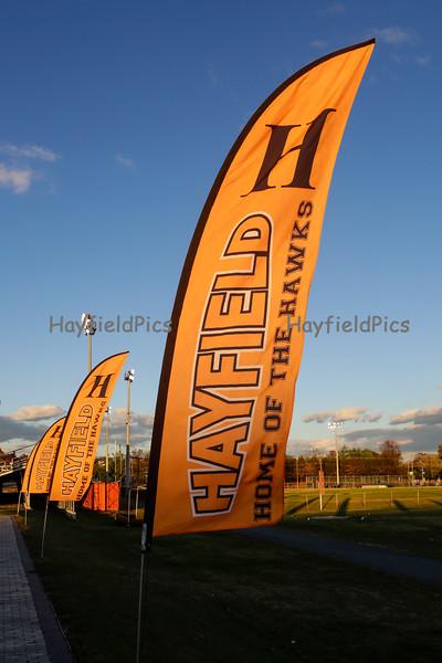 Hayfield-2021