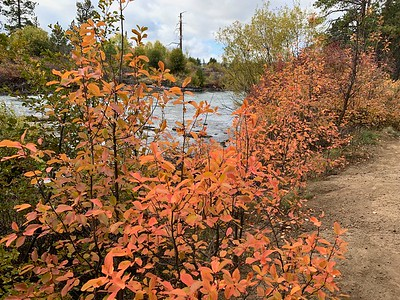 Fall color along the Deschutes River, Oregon