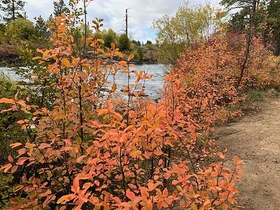 Fall color along the Deschutes River, Oregon