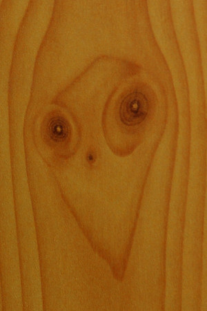 ET face in the woodwork at Flagstaff, Arizona hotel