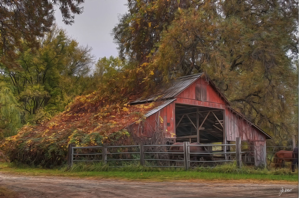 Road 193 barn