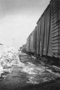 2009.033.1.04--print 2x3--C&NW--freight train 628 standing on main--Livingston WI--1953 020