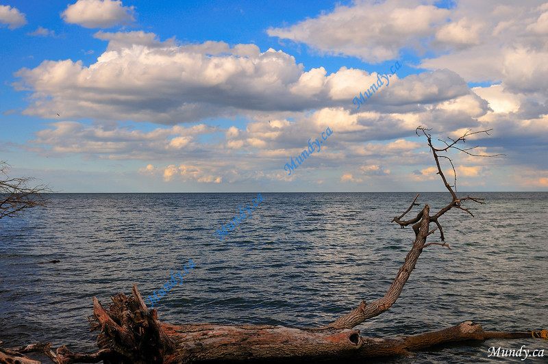 """JULY #1 <br /> <br /> Point Pelee, Ontario.<br /> <br /> """"He wraps up the waters in his clouds, yet the clouds do not burst under their weight.""""<br /> Job 26:8"""