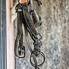 Part of a horse bridle, What Not Shop, 1st Street, Cerrillos, New Mexico