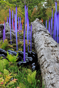 2013_05_30 Chihuly Glass 069