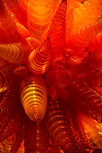 2013_05_30 Chihuly Glass 040