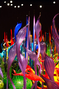 2013_05_30 Chihuly Glass 028