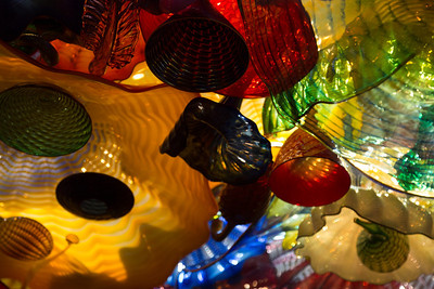 2013_05_30 Chihuly Glass 013