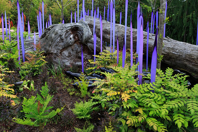 2013_05_30 Chihuly Glass 076