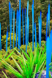 2013_05_30 Chihuly Glass 060
